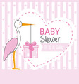 stork with gift pack vector image