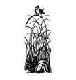 bird on clump of grass doodle vector image