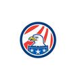 American Bald Eagle Head Flag Circle Retro vector image