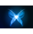 Abstract blue butterfly vector image
