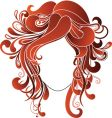 graphic hairstyle vector image
