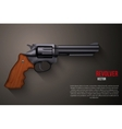 Background of Black gun metal Revolver vector image