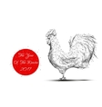 rooster grey new year vector image