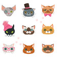 set of funny cats heads of different breeds vector image