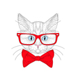cute cat portrait with hipster glasses Hand drawn vector image