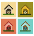 assembly flat icons dog in booth vector image