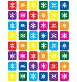 color snowflake pattern background vector image