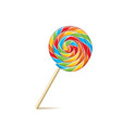 Colorful lollipop isolated on white vector image