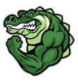 crocodile mascot show his muscle arm vector image