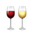 Glass of wine isolated on white vector image