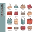 set with fashion bags vector image