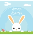 Easter bunny rabbit hole egg icon sky background vector image