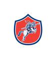 Knight Riding Horse Lance Shield Cartoon vector image vector image