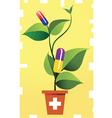 medicinal plant vector image vector image