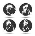 Chicken symbol vector image