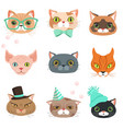 set of cute cats heads of different breeds vector image