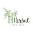 herbal medicine logo symbol vector image
