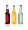 Glass soda bottles isolated on white vector image