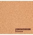 Realistic cork board texture vector image