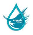 organic drop of clean water vector image