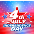 American 4th of July background vector image