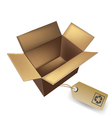 box with eco tag vector image