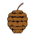 Cedar cone icon cartoon vector image