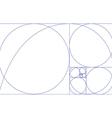 Fibonaci spiral vector image