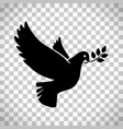 flying dove with olive twig vector image