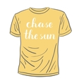 Chase the sun Brush lettering vector image