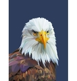 Low poly poster with eagle vector image