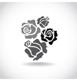 Four roses vector image