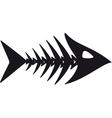 primitive fish skeleton vector image vector image