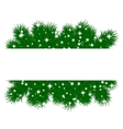 spruce branches pattern vector image
