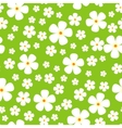 Seamless Pattern with Meadow Alpic Flowers vector image