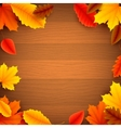 Autumn Leaves on Wood Background vector image