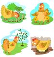 cute chiken set illustrarion vector image