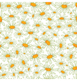 Flower camomile seamless pattern background vector image vector image