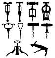 corkscrew vector image