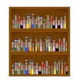 Books are on the Bookshelf vector image