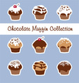 Chocolate Muffin Collection vector image vector image
