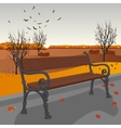 Empty wooden bench in city park in autumn vector image