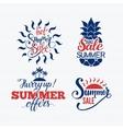 Summer sale badge vector image