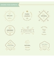 Set of badges and labels elements for organic food vector image