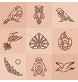 Birds line icons vector image