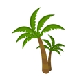 Palm Tree Isolated on White Background Arecaceae vector image
