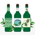 Set of three bottles for olive oil vector image