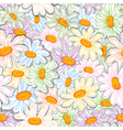 Flower camomile seamless pattern vector image