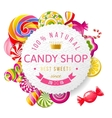 Candy shop label with type design vector image