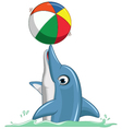 Cute dolphin cartoon playing ball vector image